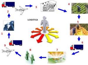 profissão e carreira em logística