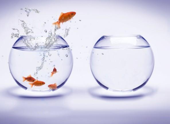 Medo de mudanças – o império das rotinas