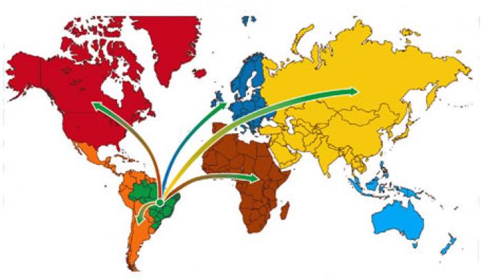 O verdadeiro plano de exportações